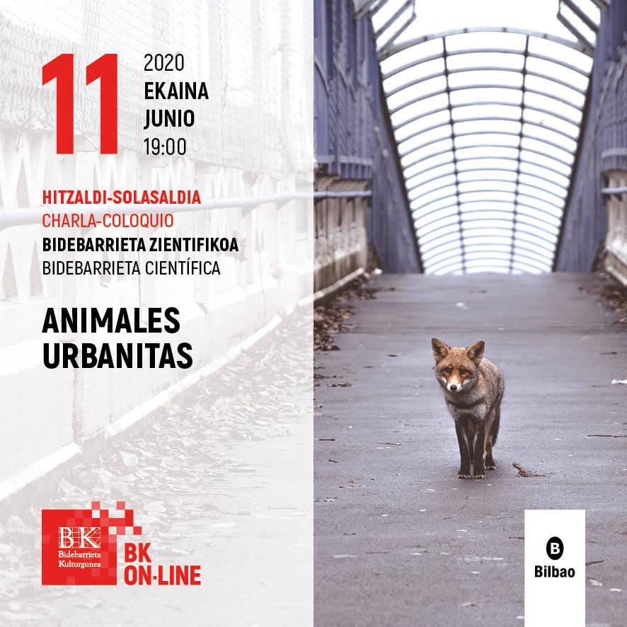 Animales urbanitas